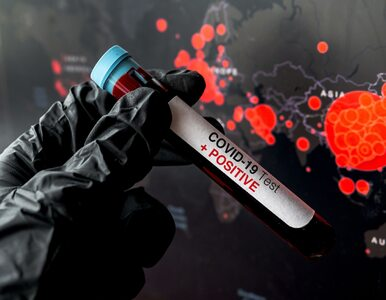 """<a href=""""https://zdrowie.wprost.pl/koronawirus/10360960/szef-who-nie-ma-watpliwosci-to-nie-jest-ostatnia-pandemia.html?utm_source=zdrowie.wprost.pl&utm_medium=feed&utm_campaign=rss"""">Szef WHO nie ma wątpliwości. """"To nie jest ostatnia pandemia""""</a> thumbnail  Koronawirus. Do czego doprowadziłoby przyspieszone opracowanie szczepionki? 9aee82543ef6848878528b69e183"""