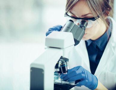 Koronawirus. Do czego doprowadziłoby przyspieszone opracowanie szczepionki? 34dacb3de6f3a09ab9e36689e2af